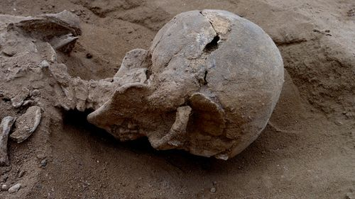 10,000-year-old skulls found with arrows embedded show earliest evidence of human warfare