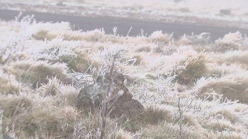 Snow in Orange, NSW