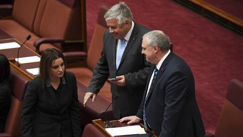 The crossbenchers were the holdouts the government needed to get the $158 billion plan through the Senate.