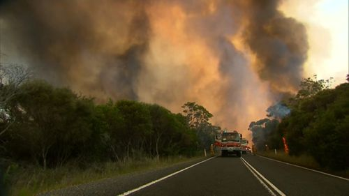 The fires are sending plumes of smoke billowing through the Royal National Park. (9NEWS)