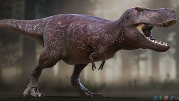 A new reconstruction of a tyrannosaurus rex has been dubbed the most accurate depiction of the dinosaur yet