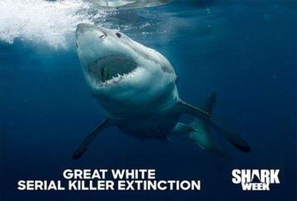 Great White Serial Killer Extinction
