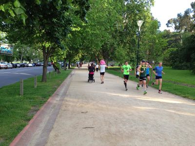 <strong>Melbourne - The Tan Track (3.8km)</strong>