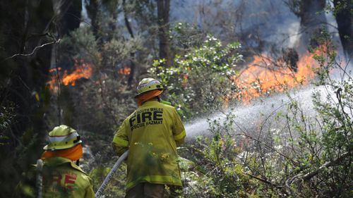 Women to make up half of all new NSW firefighter recruits