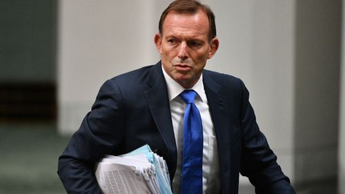 Tony Abbott is facing another slate of independent candidates at the federal election.
