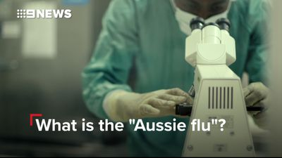Britain's worst flu season for seven years - but don't blame the Aussie virus
