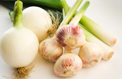 Leek, onion, garlic 'fertiliser foods'