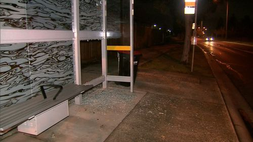 The youths smashed the window of a police vehicle and caused significant property damage in the area. Picture: 9NEWS.
