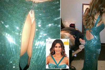 Usually it's her boobs that get all the attention, but <i>Modern Family</i> star Sofia Vergara's buttocks got their moment in the spotlight at the Emmys this year.