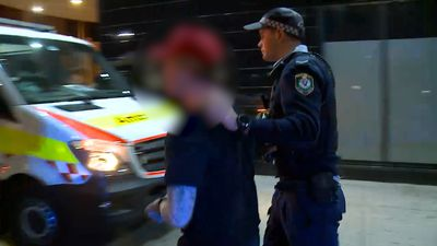 One injured, three charged over Sydney brawl