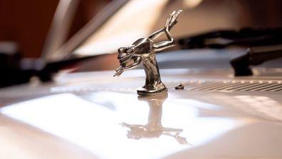 Silver frog mascot on the bonnet similar Diana car