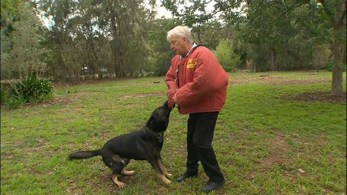 "Canine expert Steve Austin has demostrated how struggling away from an attacking dog will only ""initiate"" the animal further to continue biting (Supplied)."