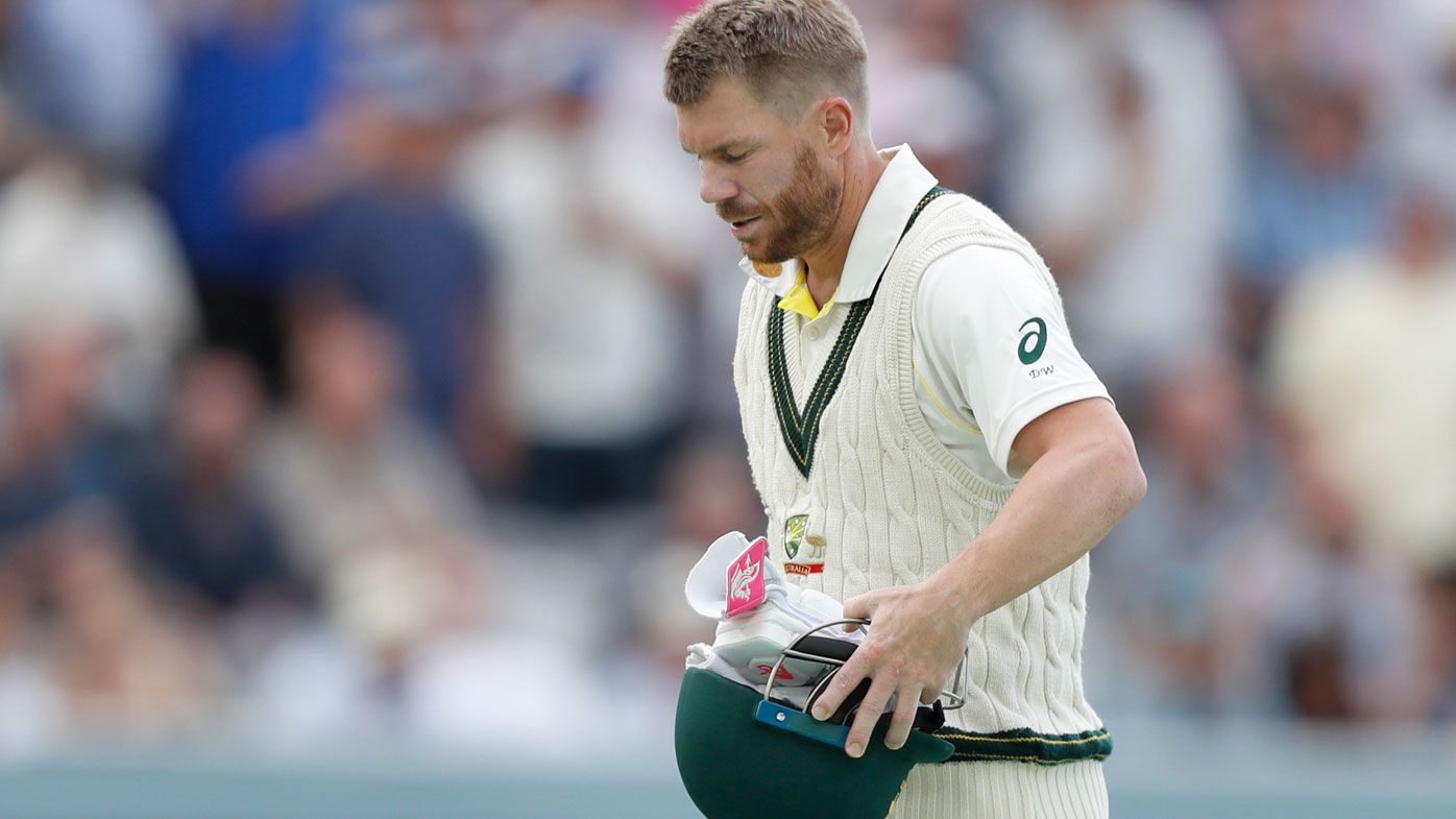 Ashes 2019 David Warner to relish added burden of no Steve Smith says Tim Paine