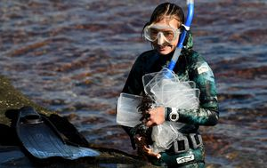 NSW beaches cleaned after APL England spills 50 shipping containers