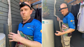 Buderim giant snake skin found hanging from roof - Sunshine Coast Snakecatchers 24/7 called in to help.
