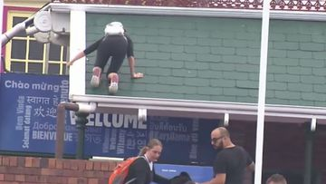 A protester climbing the roof at a Queensland theme park.