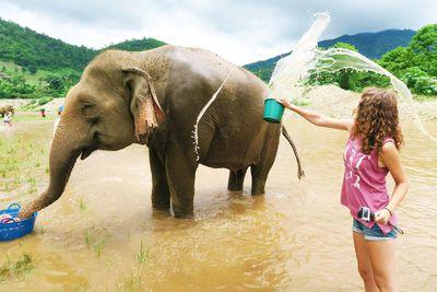 <strong>Phuket Elephant Sanctuary, Thailand</strong>