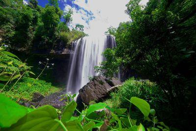 5. Atherton Tablelands Waterfalls Tour, Cairns, Queensland