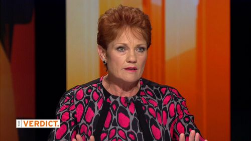 Pauline Hanson has admitted to smoking marijuana in her youth. (9NEWS)