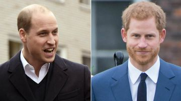 Brotherly love on show in Royal engagement