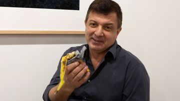 A performance artist shook up the crowd at the Art Basel show in Miami Beach when he grabbed a banana that had been duct-taped to a gallery wall and ate it.