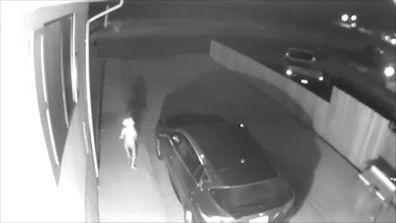 Viral news USA alien figure CCTV video Colorado World