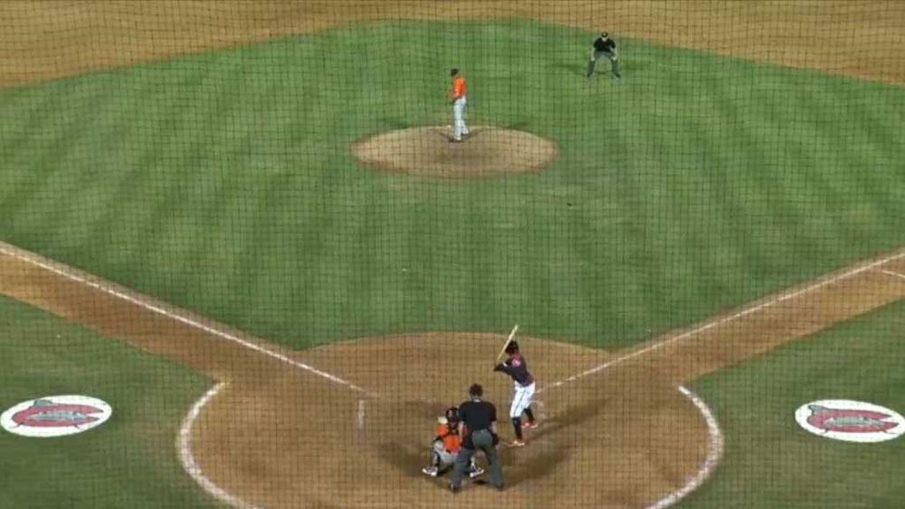 Baseball fan makes beer cup foul ball catch