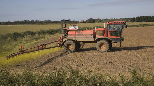 """Glyphosate is widely used in farming and has been found to """"probably"""" increase risk of cancer. (Getty)"""