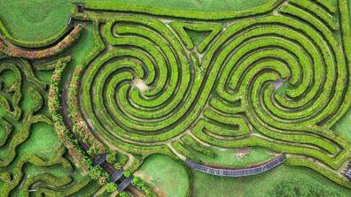 Bago Maze, NSW