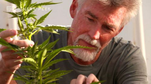 The cannabis she used had been grown by her husband John.