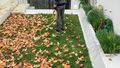Why an autumn clean should be at the top of your to-do list