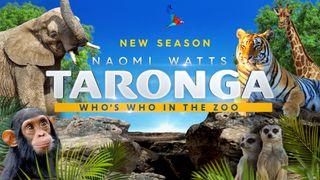 taronga: who's who in the zoo