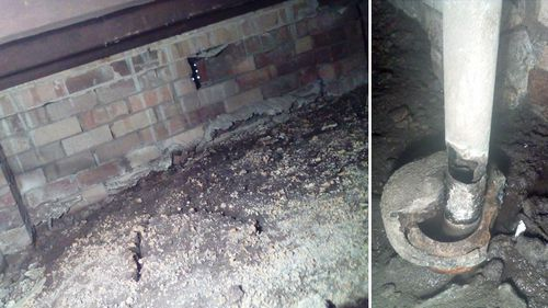 The sub-floor of Marats Aminovs' Ermington public housing home, which is contaminated with mould.