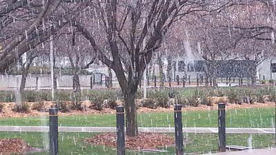 Snow falling on Bruce, ACT. (Twitter: Hundred Swords)