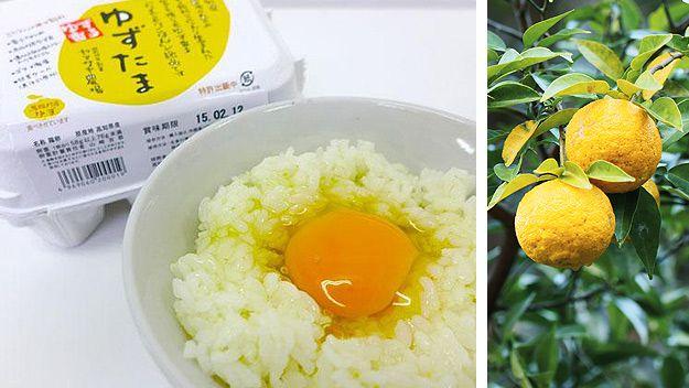 Yuzu tama and tamago-kake gohan dish (Hanahanakana/Ameblo), yuzu fruit (Getty)