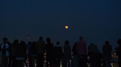 Crowds gather in Tokyo to view the phenomenon. (AAP)