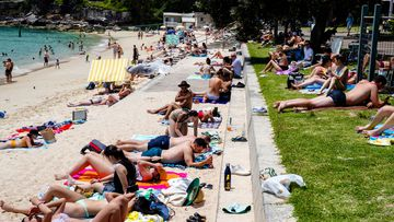 Coronavirus restrictions have been eased in NSW ahead of summer. Pictured, people at Nielsen Park in Sydney.