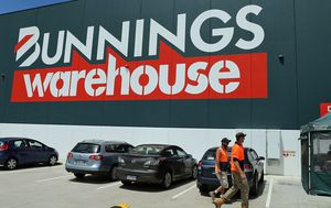 Bunnings bans all timber sourced from VicForests