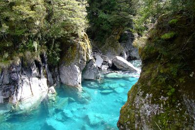 <strong>The Blue Pools, Queenstown</strong>