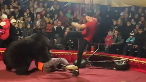 Circus bear mauls trainer in front of screaming audience members