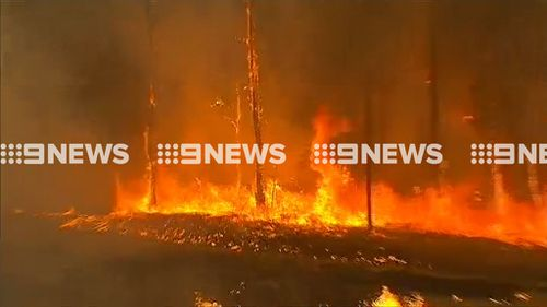 The fire at Cessnock is burning near homes (9NEWS)