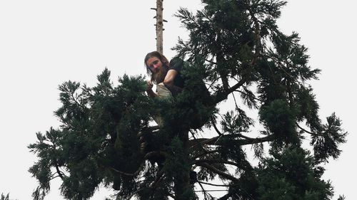 US man returns to solid ground after spending 24 hours atop a 24m tree