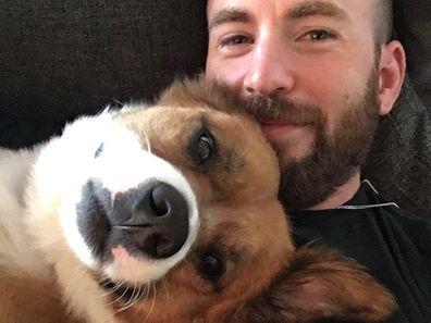 Chris Evans, Instagram photo, pet dog