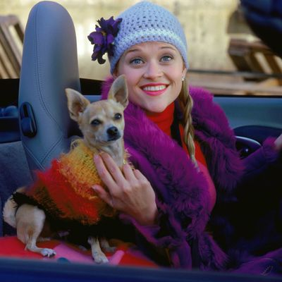 <p><strong>8.<em> </em></strong>Skinny-Bottomed Jeans, Boots with the fur and Bruiser as her best accessory - <em>Legally Blonde </em>2001</p> <p>Elle was an early adapter of coloured fur, although knowing her stance on animal cruelty we can rest knowing that this purple concoction was most likely fake.</p>