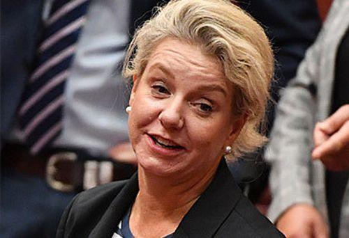 Bridget McKenzie (AAP)