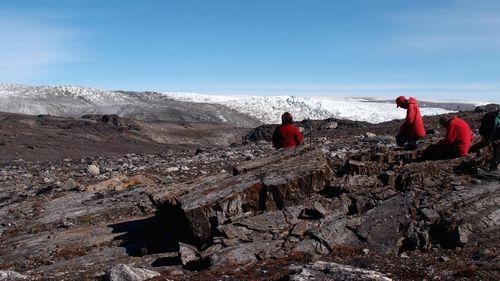 Oldest fossils found in Greenland