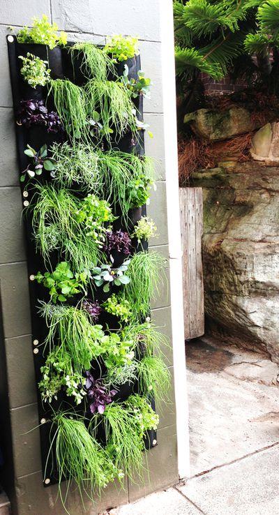 2. Grow a vertical garden