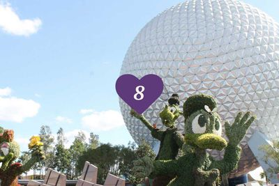 <strong>8. Walt Disney&rsquo;s Epcot Park, Florida</strong>