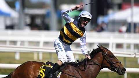 Aloisia will start a short-price favourite for the VRC Oaks.