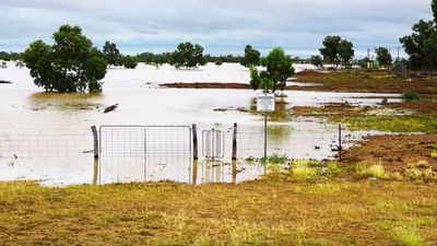 <p>Property was submerged by the flooding.</p><p>More thunderstorms and rain are expected to fall over western parts of the state this week.</p><p>(Supplied / Nick McGrath, Winton Shire Council)</p>